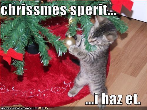 Christmas spirit cat