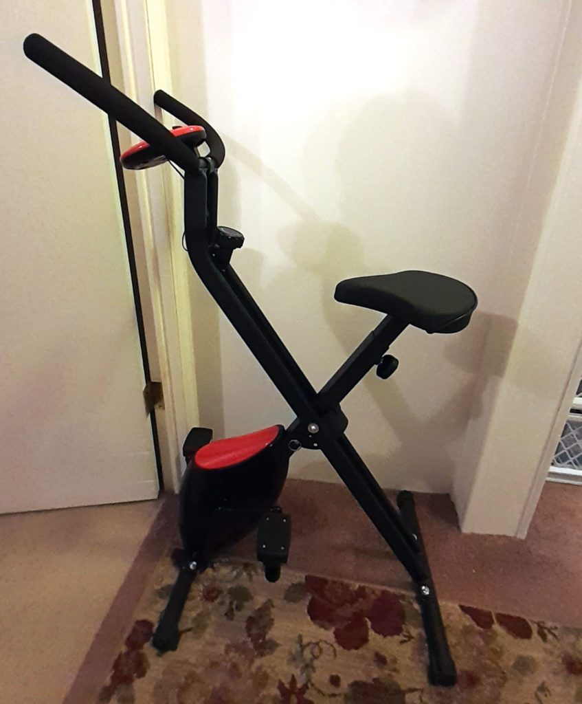 The Girl's Got Sole - Exercise bike